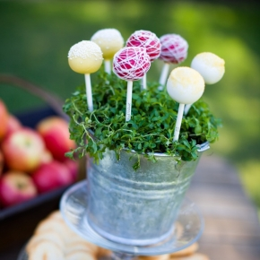 cake-pops-cropped